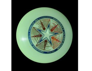Ultimate Frisbee Sport Disc 175