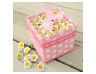 Silk Daisy Chain Gift Box