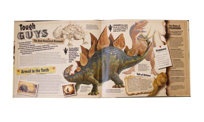 Extreme Dinosaurs Page Detail