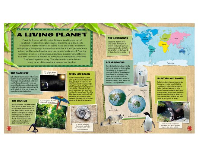 Animal Atlas - living planet