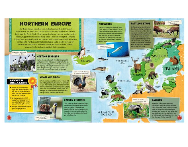 Animal Atlas - Northern Europe
