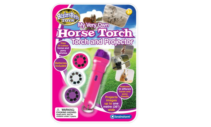 Brainstorm Horse Torch and Projector