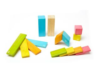 Tegu 14 Piece Magnetic Wooden Block Set