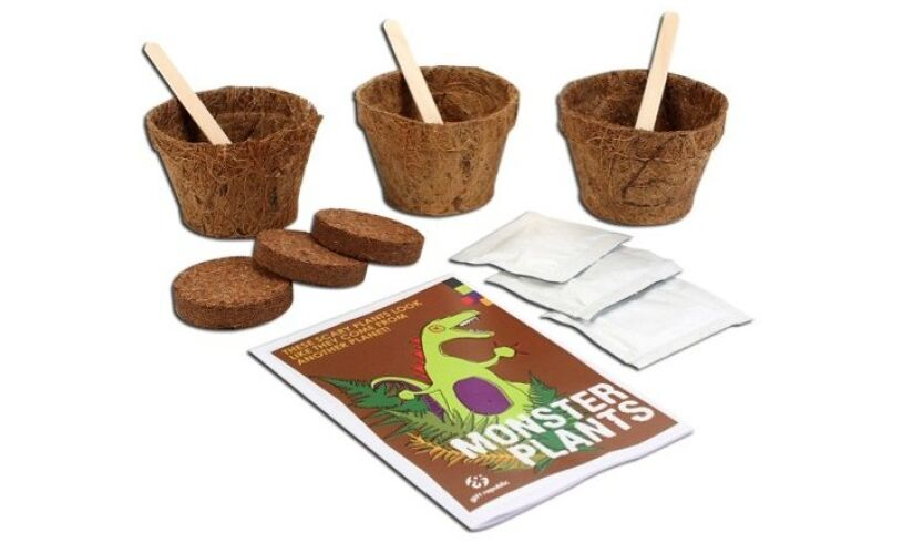 Grow your own Monster Plants Contents