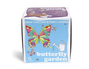 Grow your own Butterfly Garden