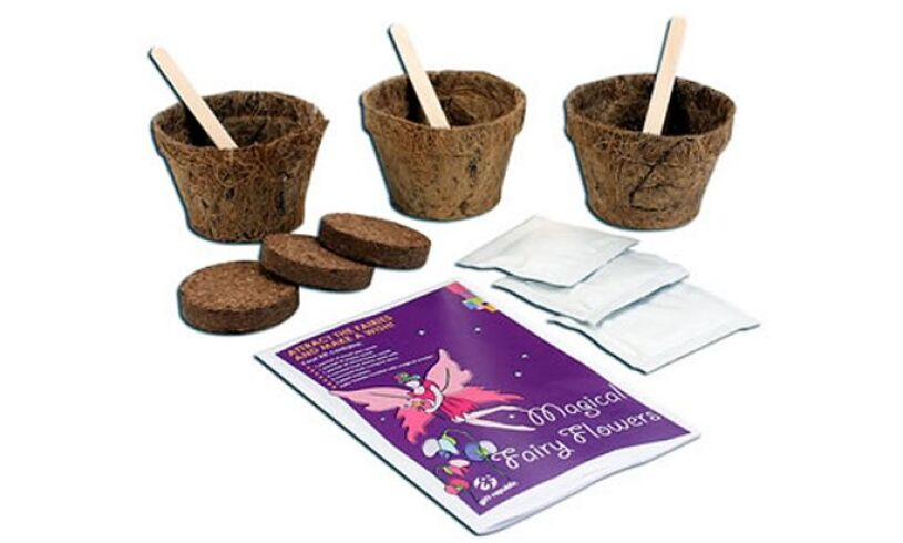 Grow your own Magical Fairy Flowers Contents