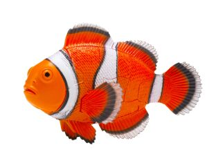 Thames and Kosmos Clownfish 3D Puzzle