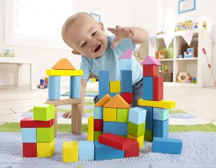 Hape Wonderful Beech Blocks