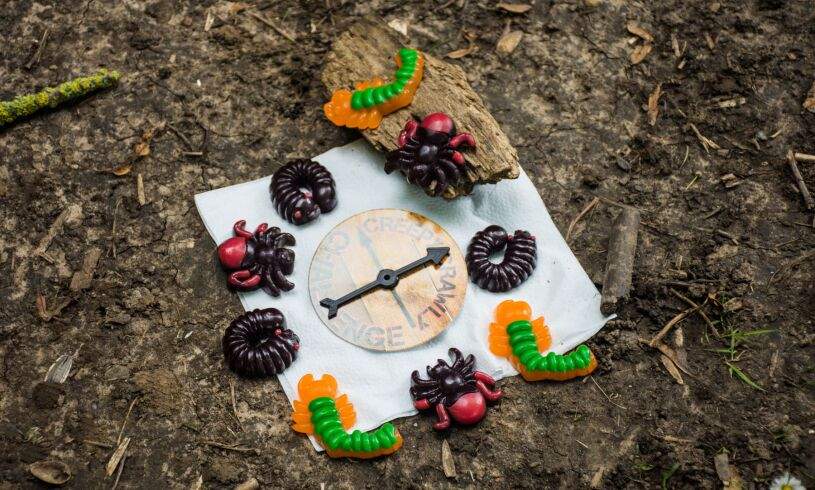 Treat Factory Creepy Crawly Challenge