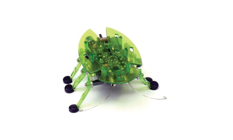 The Hexbug Beetle