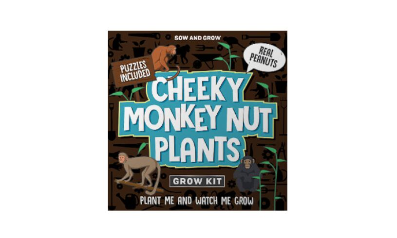 Grow your own Cheeky Monkey Nut Plants