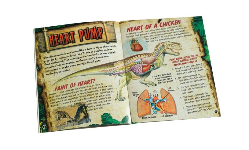 Smartlabs Squishy T-Rex Booklet