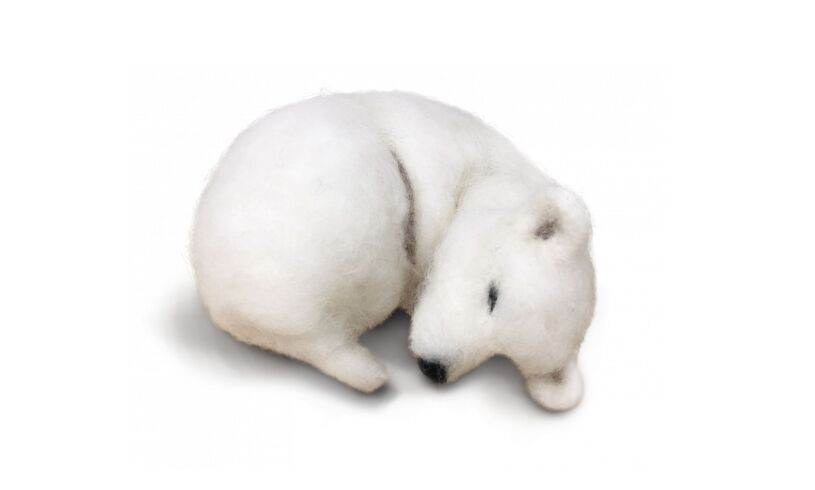 Craft Kit Company Snoozy Polar Bear Needle Felting Kit