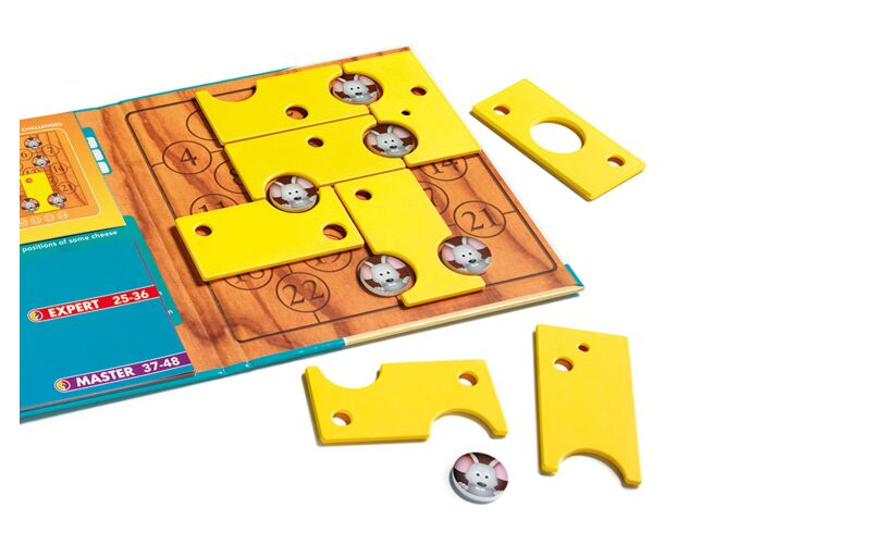 Smart Games Brain Cheeser Magnetic Puzzle Game