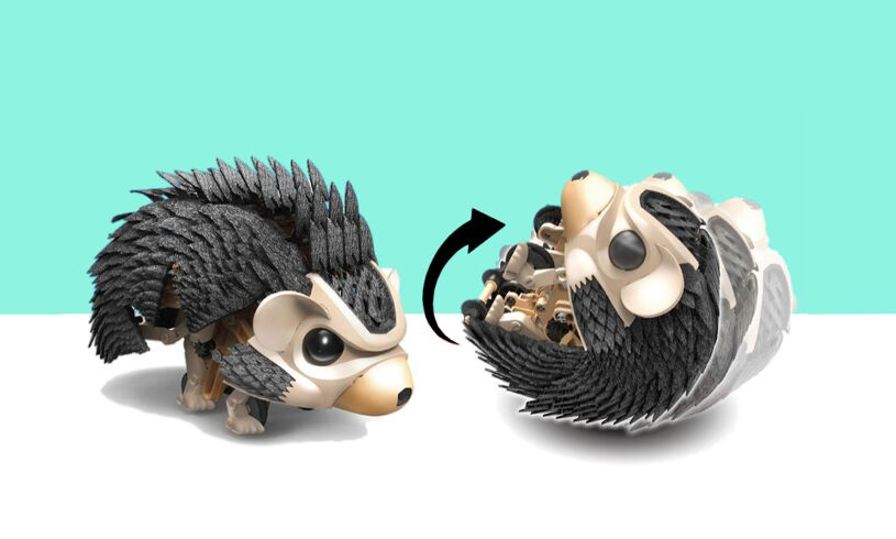 Robotic Hedgehog toy