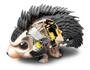 Robotic Hedgehog