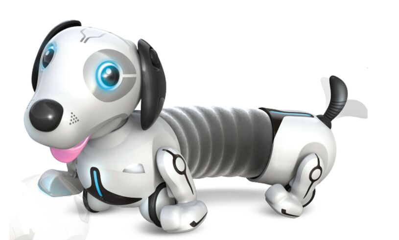 Robo Dash - Your Own Robot Pet