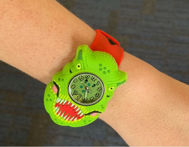 Childs Dinosaur Watch