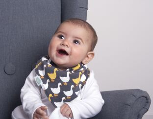Stylish Greys Bandana Bibs