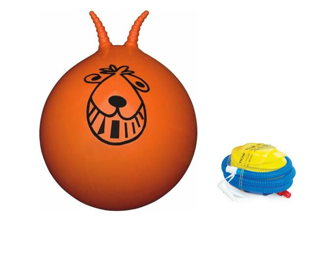 Retro Space Hopper with Pump