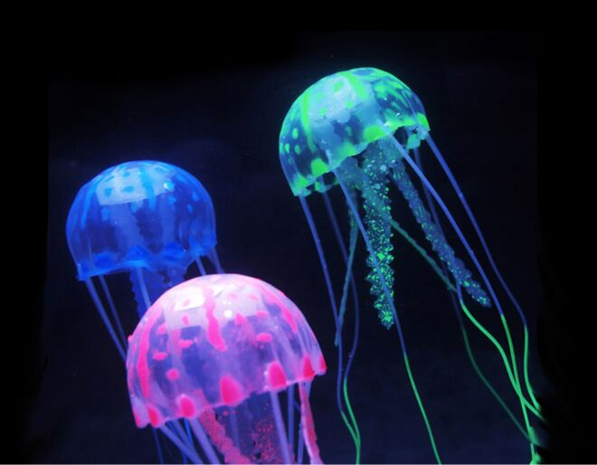 Jellyfish Tank Mood Light Up Close
