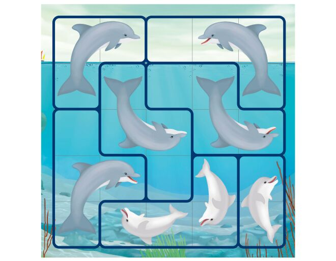 Flippin' Dolphins Puzzle Game