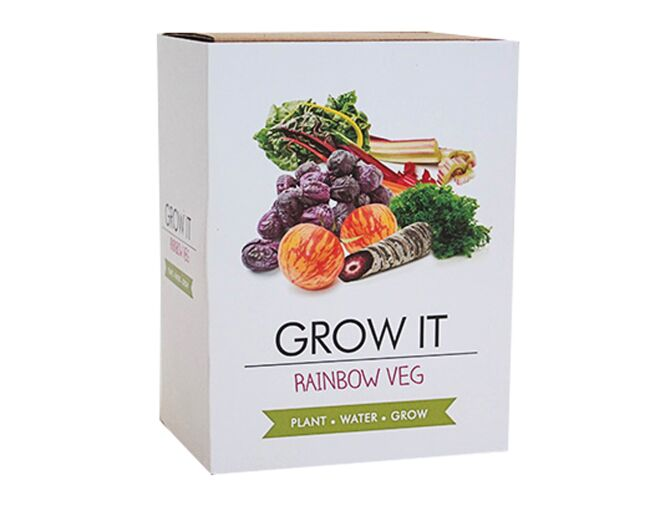 Rainbow Vegetable Growing Kit