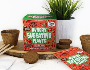 Grow Your Own Bug Eating Plants
