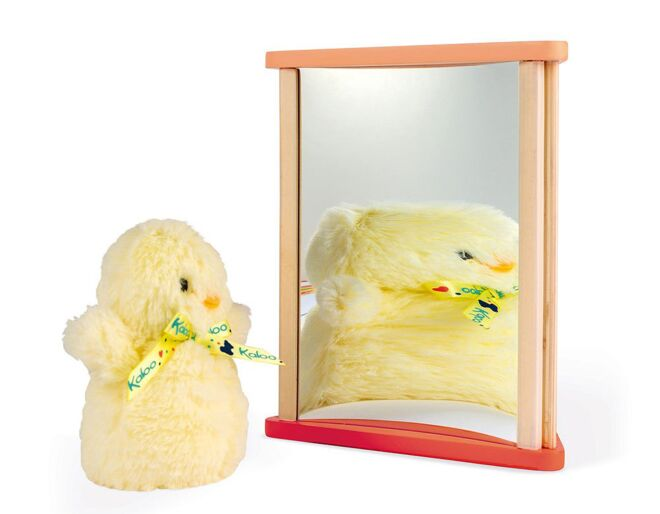 Childrens funny mirrors