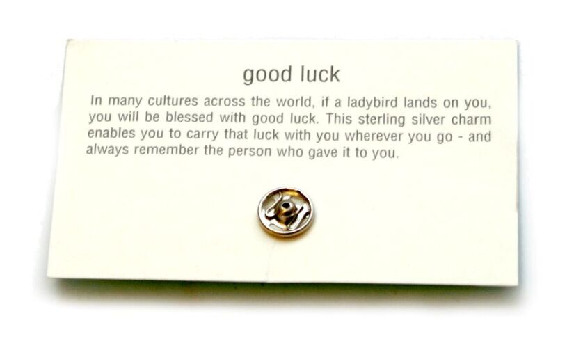 Good Luck Ladybird Charm Message
