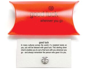 Good Luck Ladybird Charm