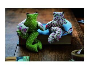 Beanbag Frog Sewing Kit